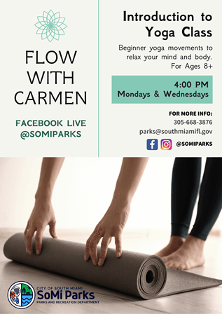FLOW WITH CARMEN - Small